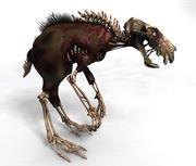 Zombie Ratdog 3d model