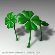 Shamrock (High Res) 3d model