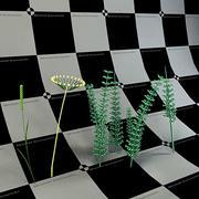 식물 3d model