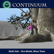 Multi Oak - One model, many trees-other 3d model