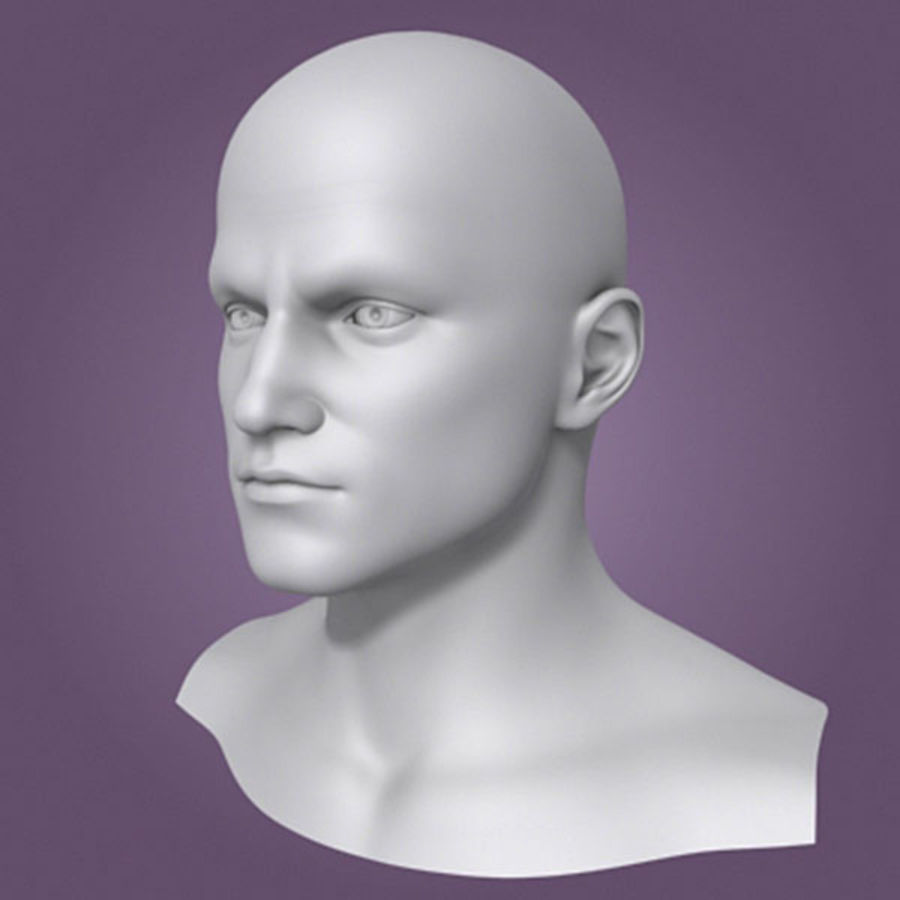 Male Head 3d Model(1) royalty-free 3d model - Preview no. 4