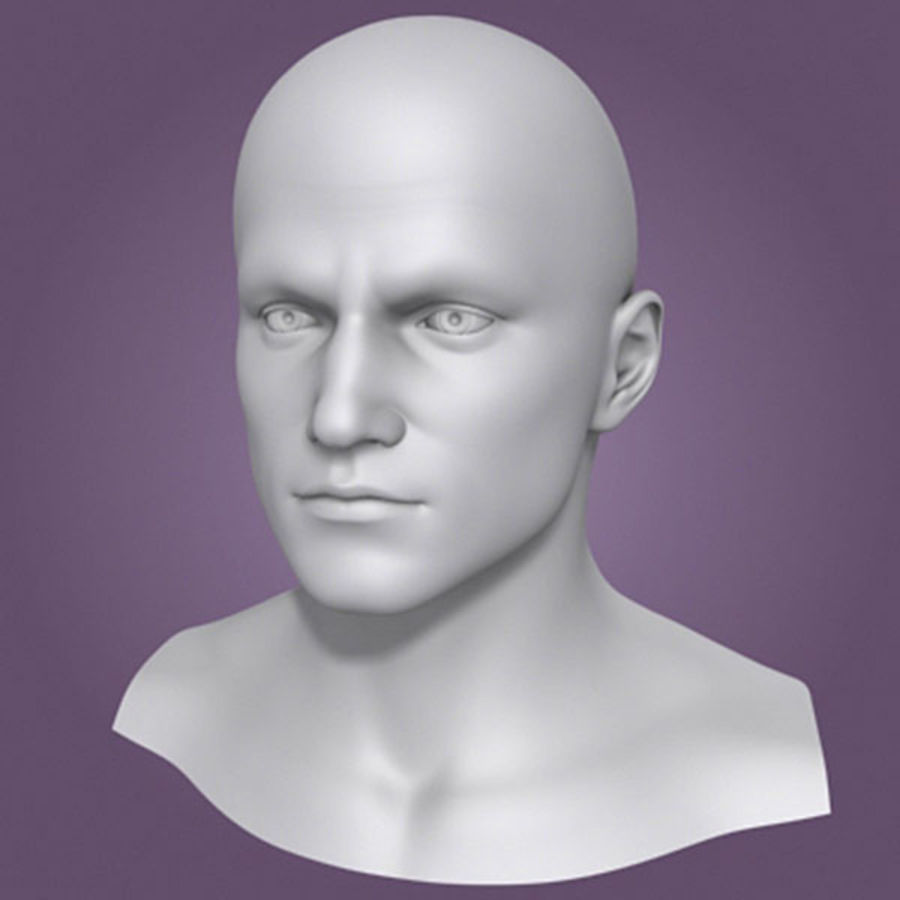 Male Head 3d Model(1) royalty-free 3d model - Preview no. 3