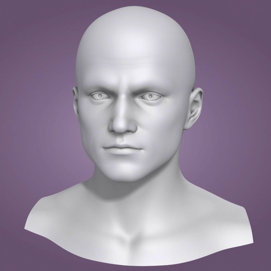 Male Head 3d Model(1) royalty-free 3d model - Preview no. 2