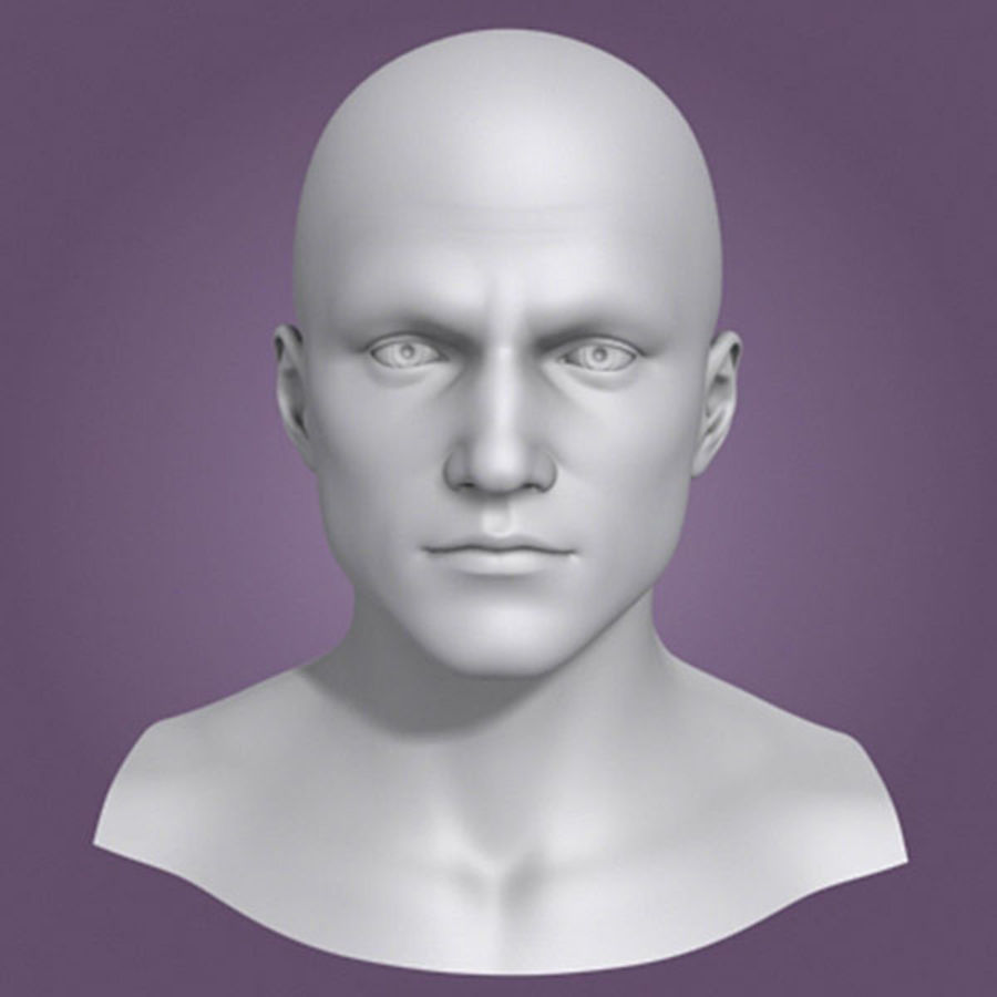 Male Head 3d Model(1) royalty-free 3d model - Preview no. 1