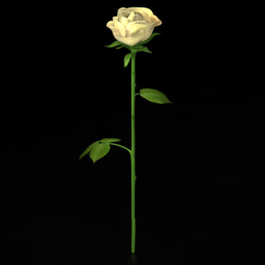 Rose royalty-free 3d model - Preview no. 9