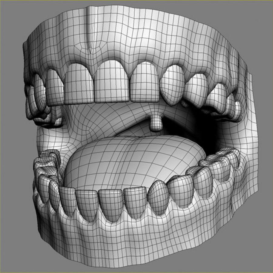 人类牙龈3d模型 royalty-free 3d model - Preview no. 5