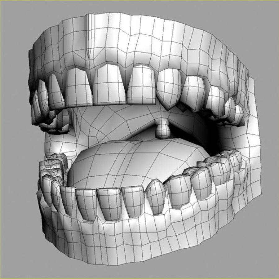 人类牙龈3d模型 royalty-free 3d model - Preview no. 4