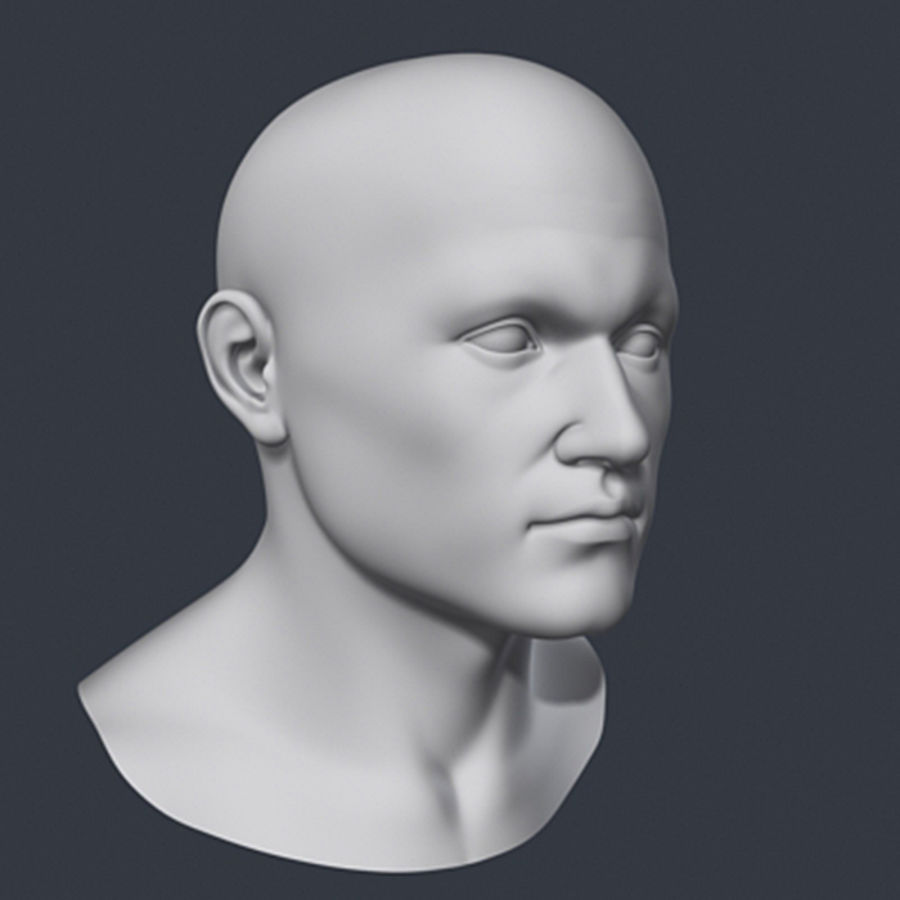 Cabeça masculina royalty-free 3d model - Preview no. 5