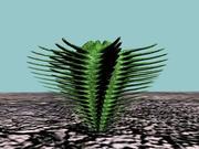 10 Cactuses 3d model