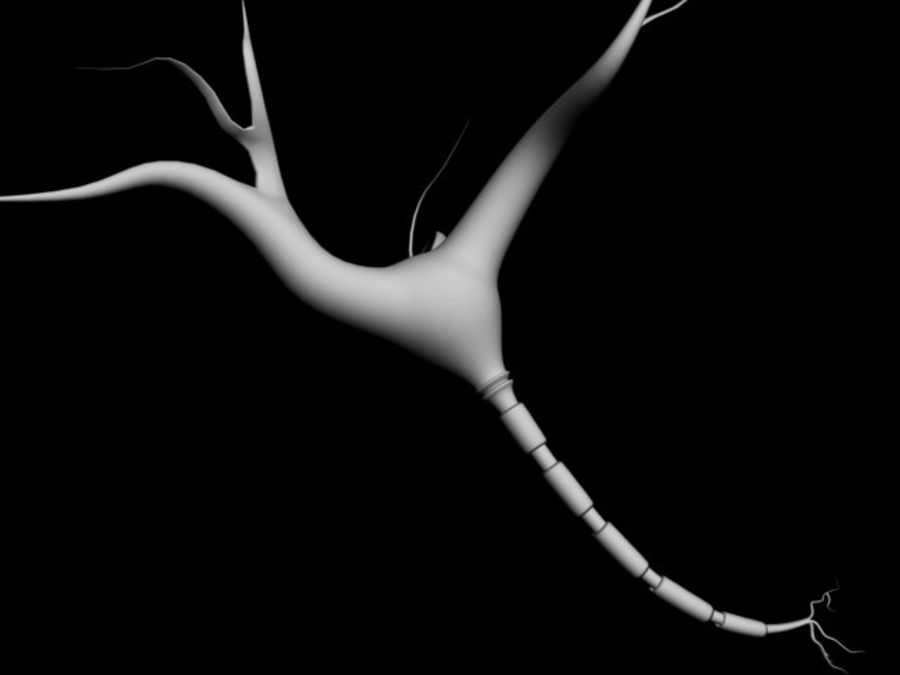 brain cell royalty-free 3d model - Preview no. 2