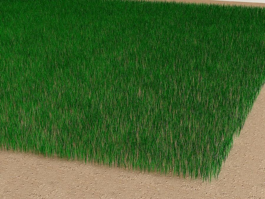 Grass royalty-free 3d model - Preview no. 12