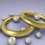 rings.zip 3d model