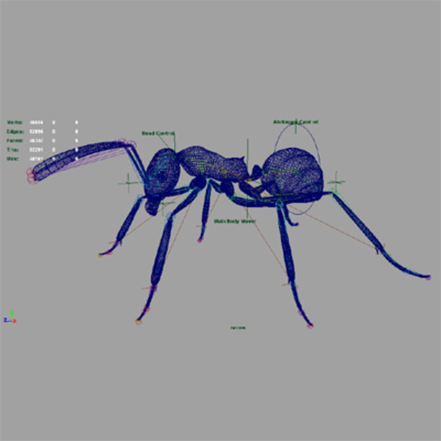Worker Ant royalty-free 3d model - Preview no. 5