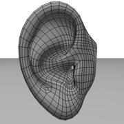 ear.3ds 3d model