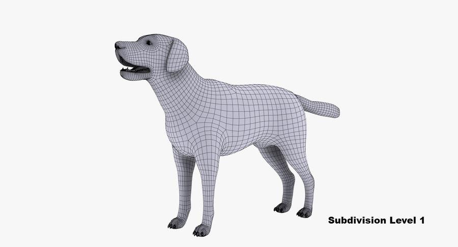Labrador royalty-free 3d model - Preview no. 12