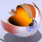 3D eye Section 3d model