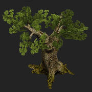old-pine.max 3d model