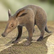 Cerdo hormiguero modelo 3d