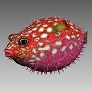 Ouriço Peixe animado 3d model