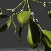 mistletoe.zip 3d model