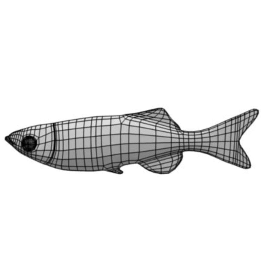 fish2 royalty-free 3d model - Preview no. 5