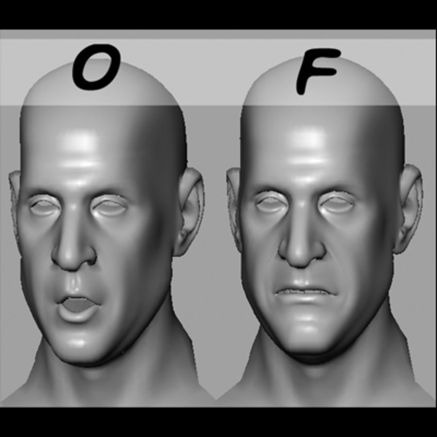 Male Head with Morph Targets royalty-free 3d model - Preview no. 17