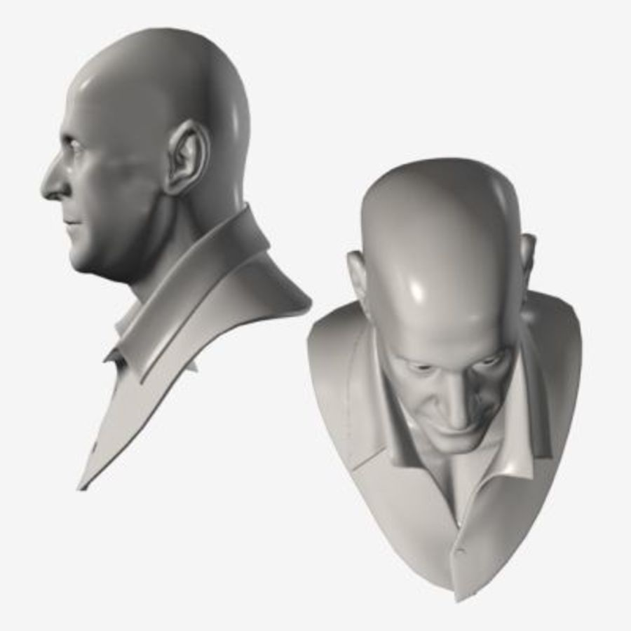 Male Head with Morph Targets royalty-free 3d model - Preview no. 7
