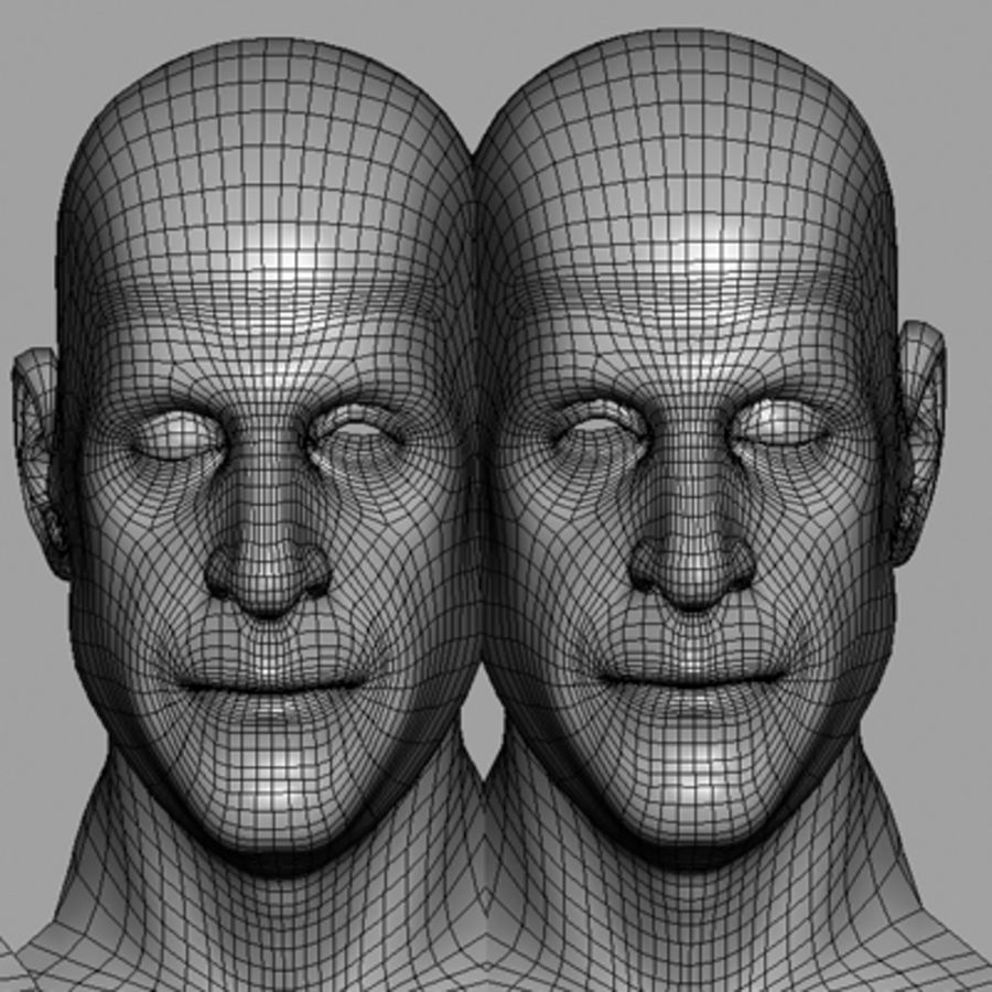 Male Head with Morph Targets royalty-free 3d model - Preview no. 22