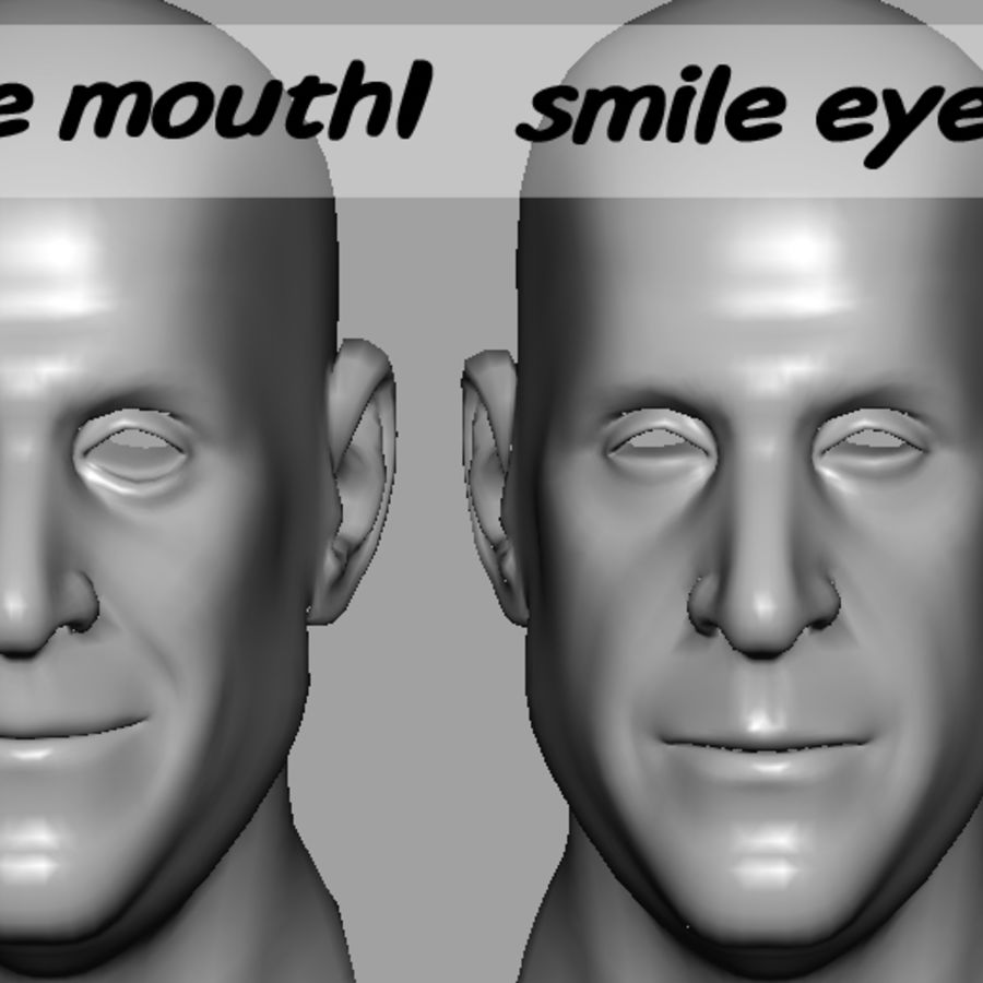 Male Head with Morph Targets royalty-free 3d model - Preview no. 12