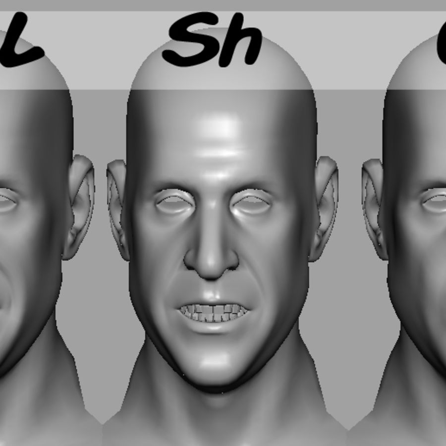 Male Head with Morph Targets royalty-free 3d model - Preview no. 19