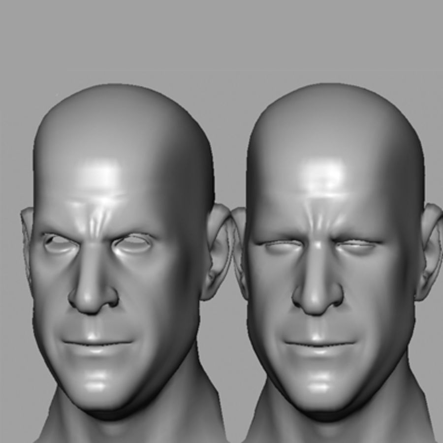 Male Head with Morph Targets royalty-free 3d model - Preview no. 11