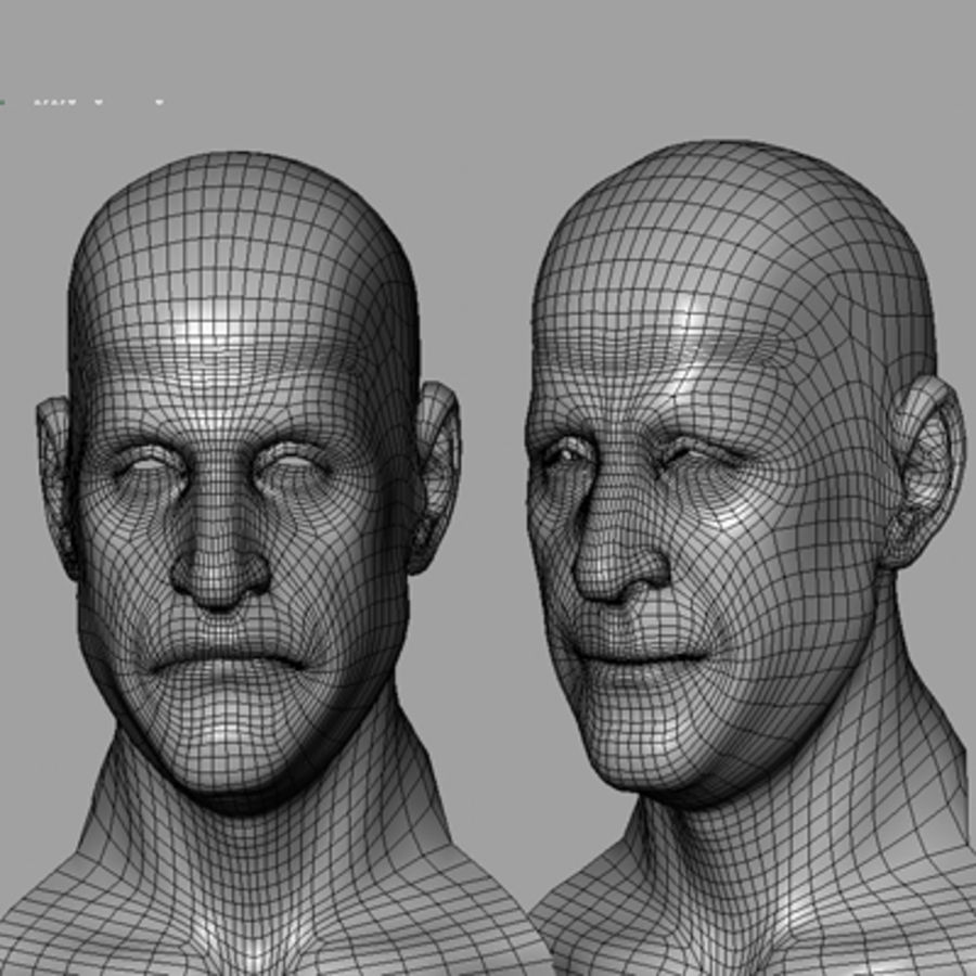 Male Head with Morph Targets royalty-free 3d model - Preview no. 21