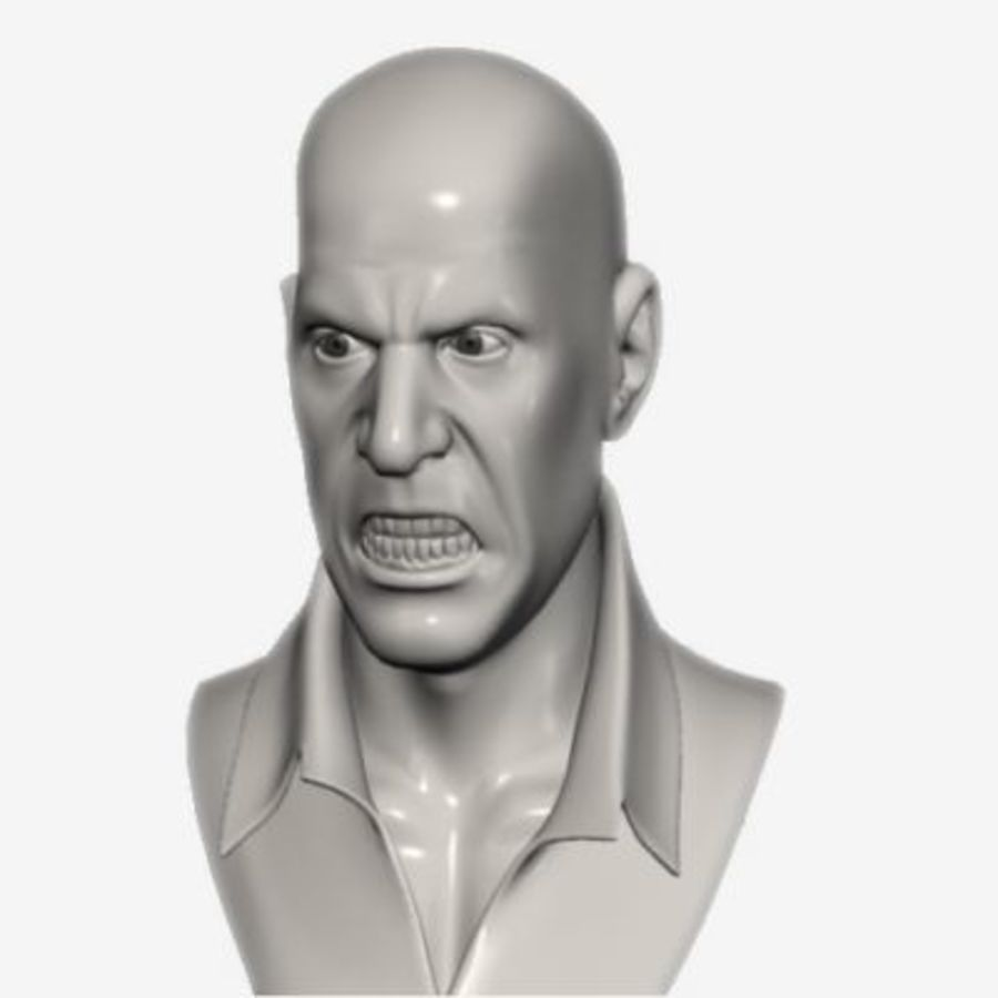 Male Head with Morph Targets royalty-free 3d model - Preview no. 4