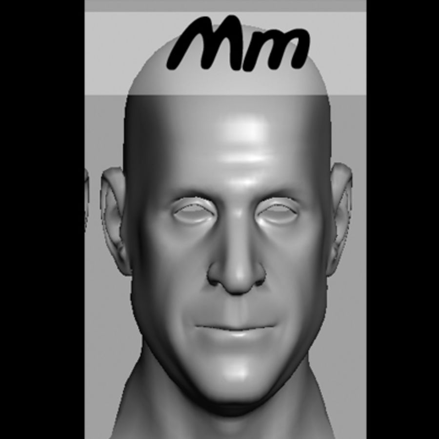 Male Head with Morph Targets royalty-free 3d model - Preview no. 16