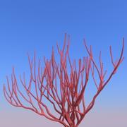 珊瑚B. 3d model