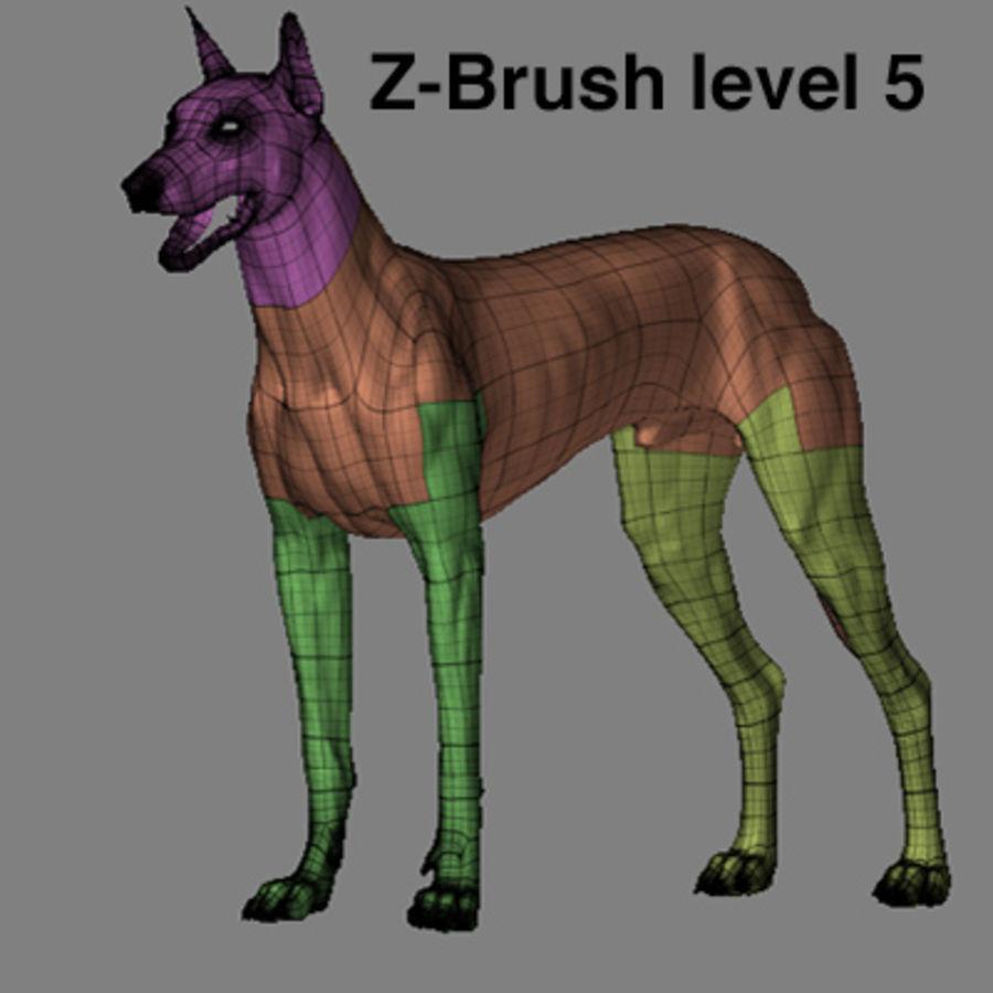 狗zbrush ztl royalty-free 3d model - Preview no. 8