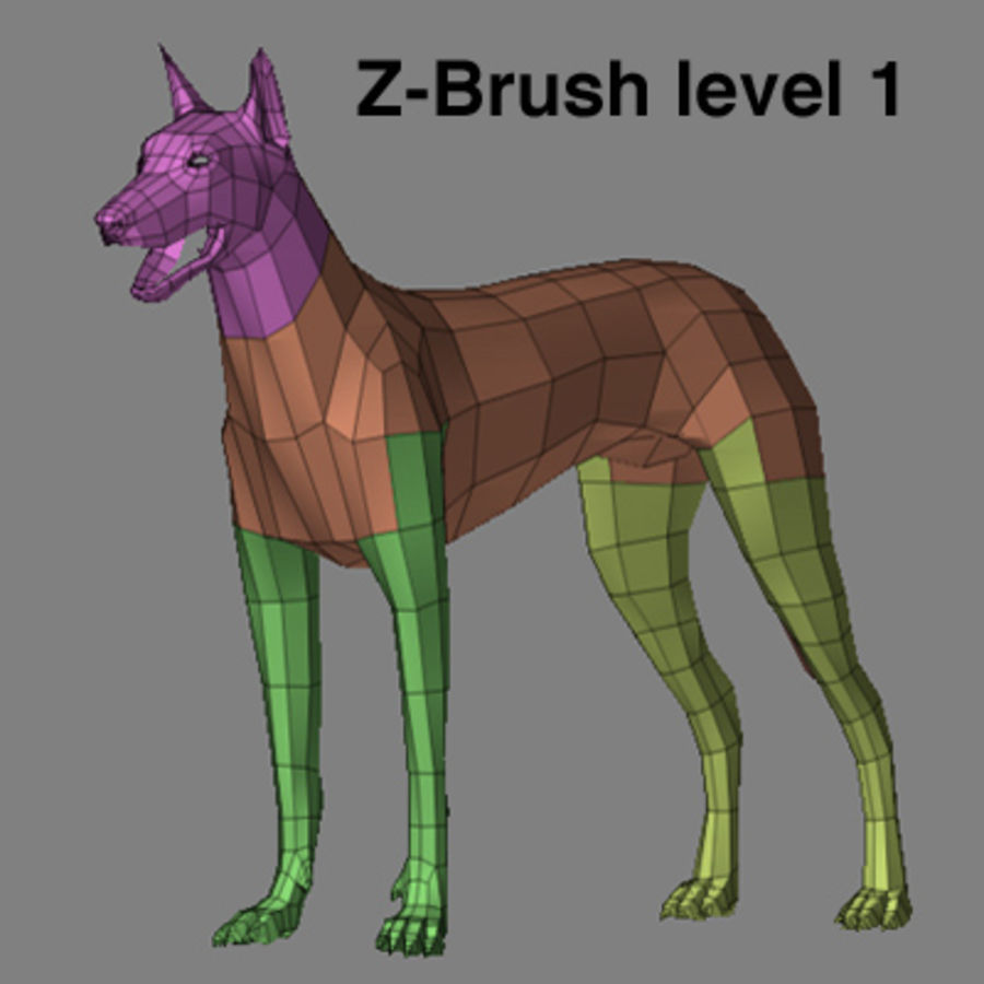 狗zbrush ztl royalty-free 3d model - Preview no. 7