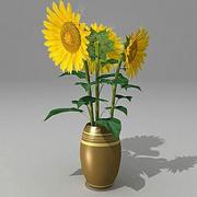 Bouquet Sunflower fbx.zip 3d model
