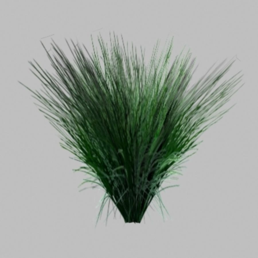 Gras royalty-free 3d model - Preview no. 1