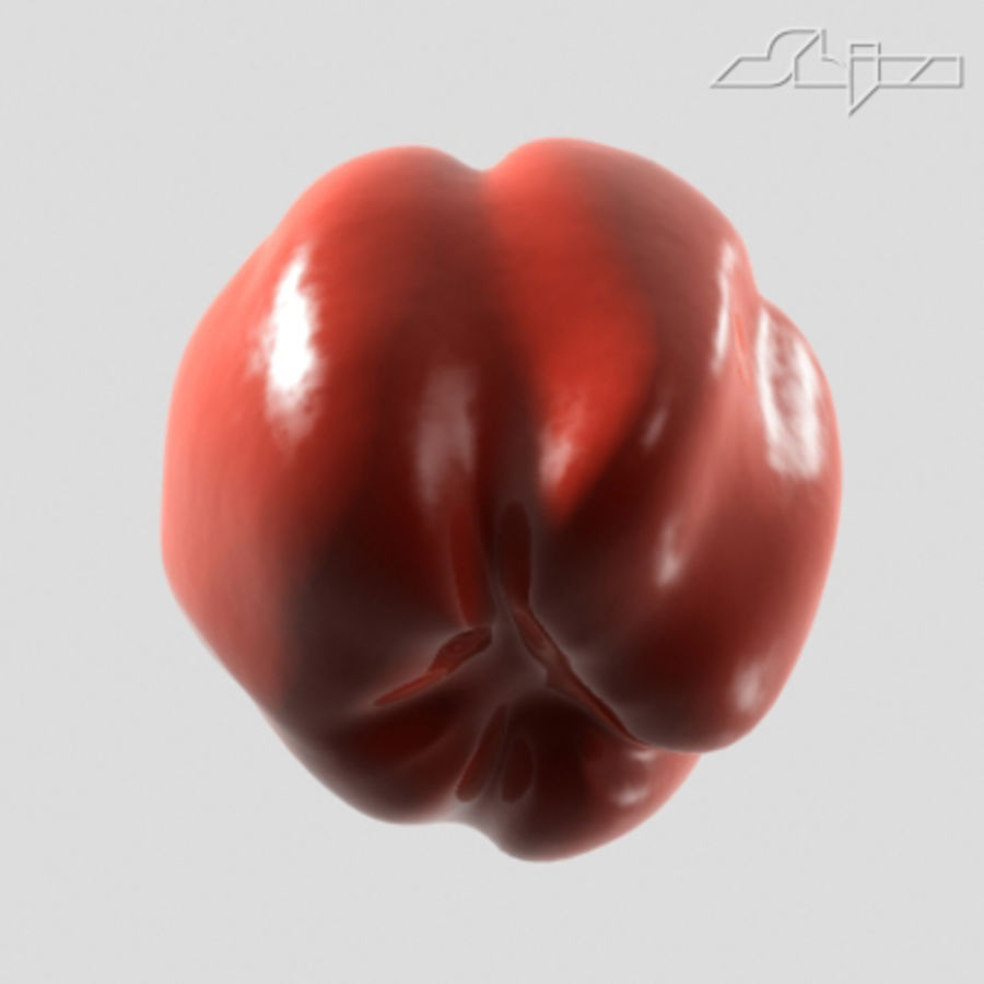 Pepper royalty-free 3d model - Preview no. 3