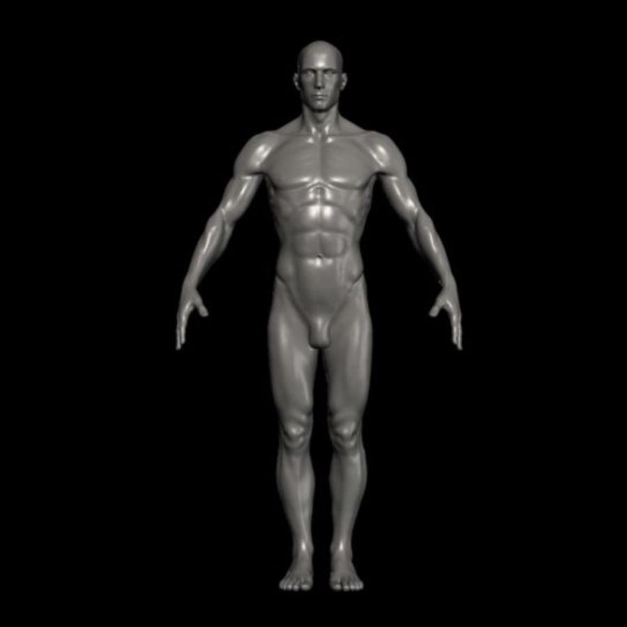 Male Human-obj, ma ascii, mb formats 3D Model $20 -  obj - Free3D