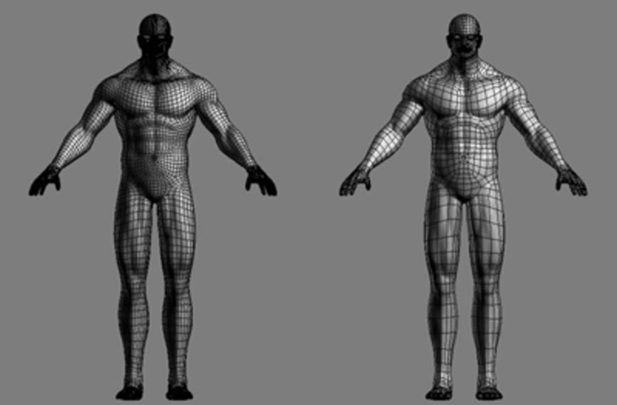Homme athlétique + cartes normales royalty-free 3d model - Preview no. 5