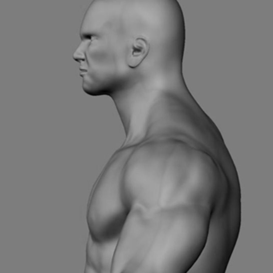 Homme athlétique + cartes normales royalty-free 3d model - Preview no. 1