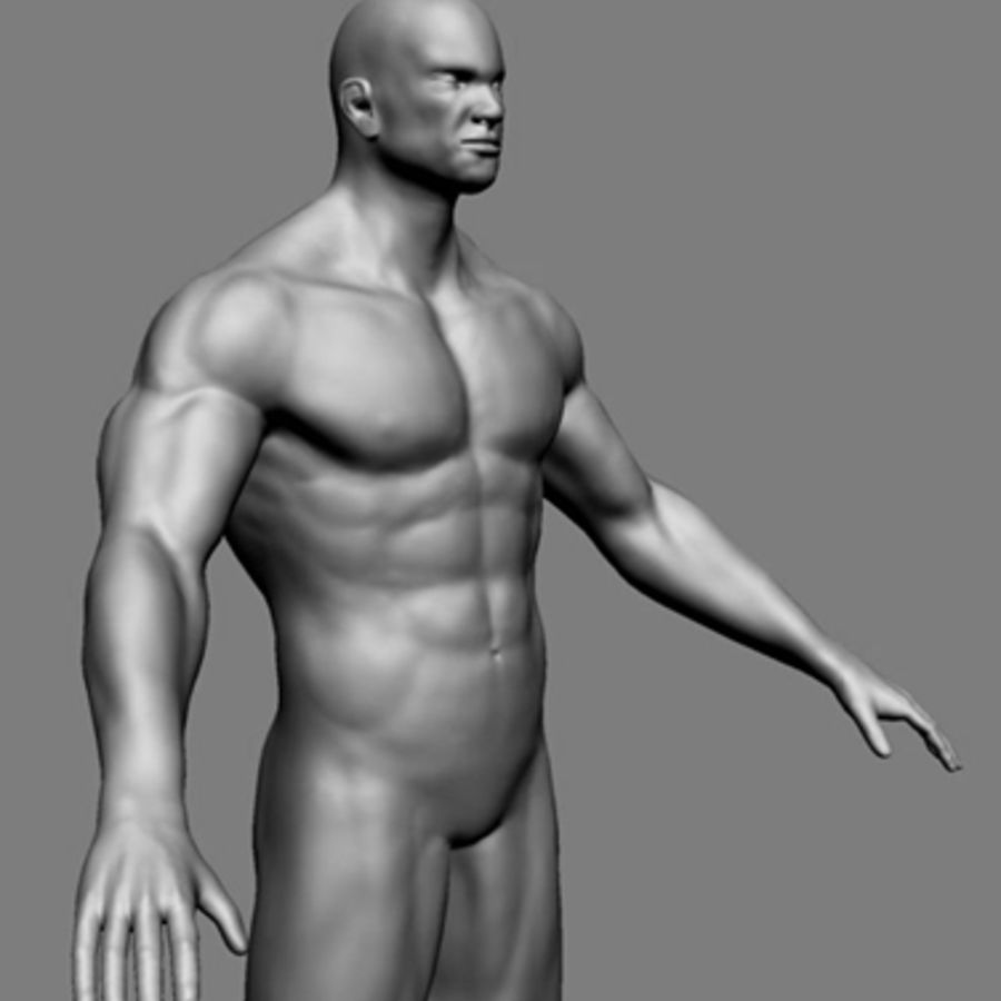 Homme athlétique + cartes normales royalty-free 3d model - Preview no. 10