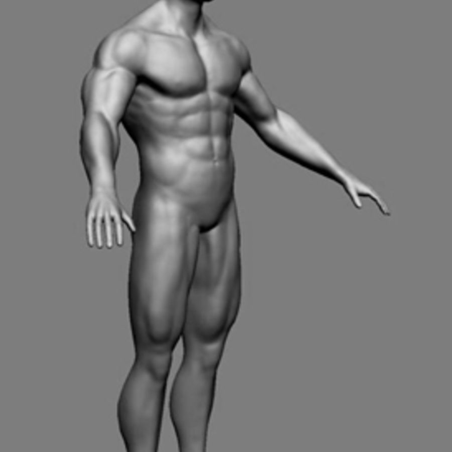 Homme athlétique + cartes normales royalty-free 3d model - Preview no. 2