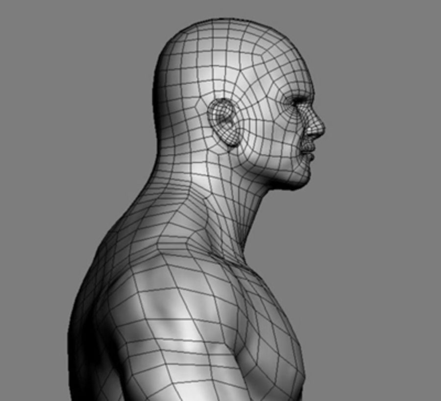 Homme athlétique + cartes normales royalty-free 3d model - Preview no. 9