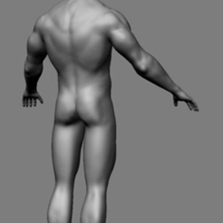 Homme athlétique + cartes normales royalty-free 3d model - Preview no. 4