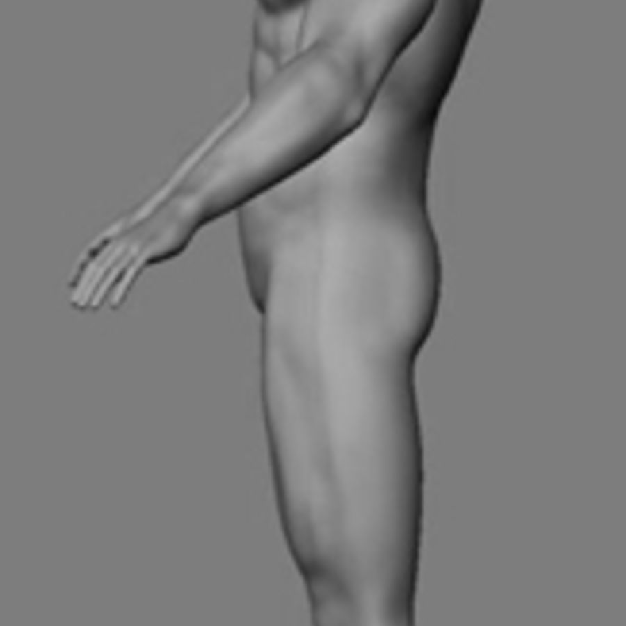 Homme athlétique + cartes normales royalty-free 3d model - Preview no. 14