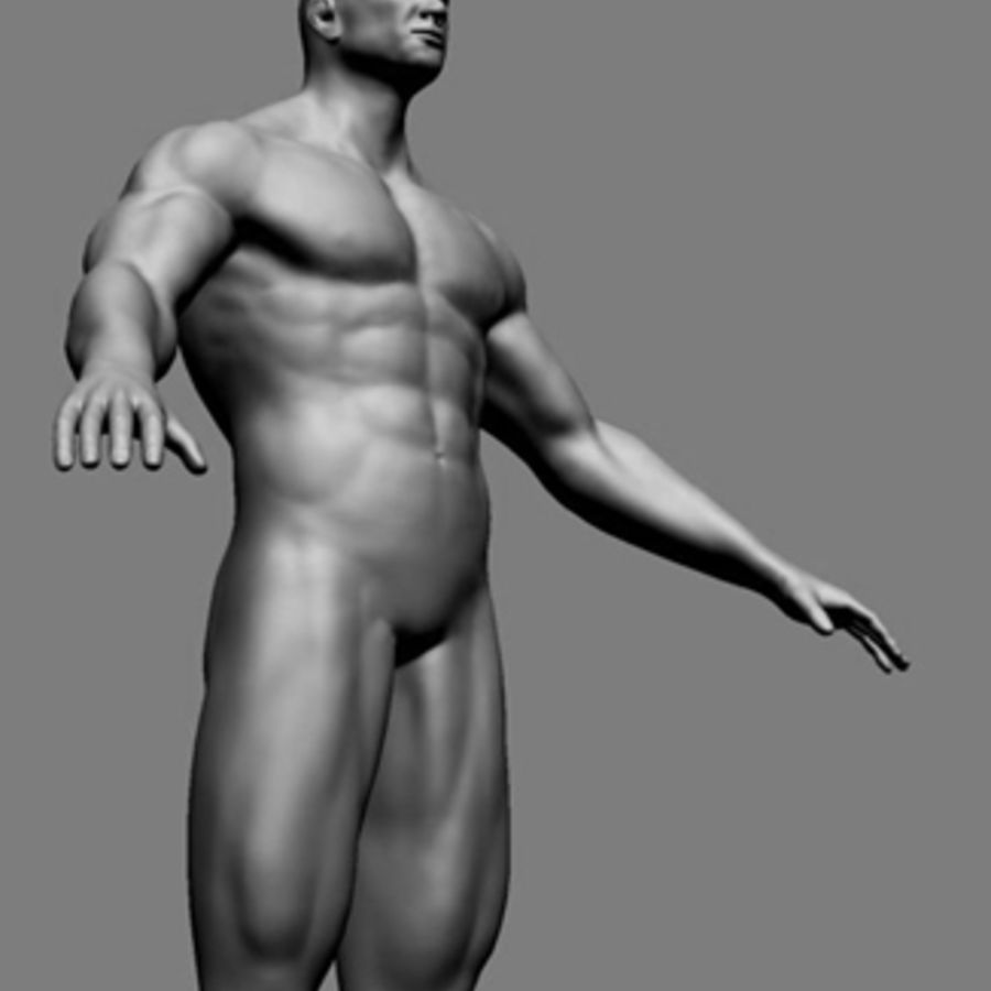 Homme athlétique + cartes normales royalty-free 3d model - Preview no. 11