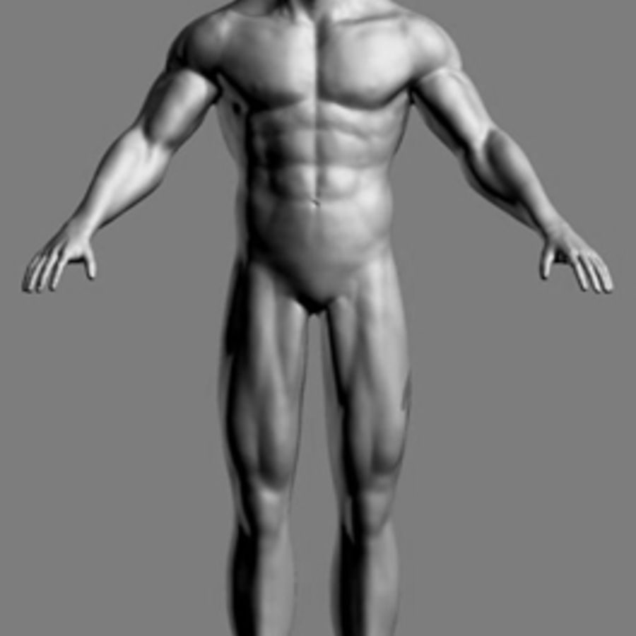 Homme athlétique + cartes normales royalty-free 3d model - Preview no. 3